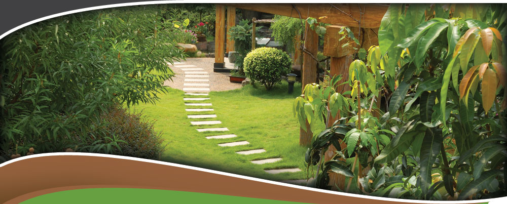Contact 4 Seasons Landscaping In Las Vegas Landscaping Company Contact Form